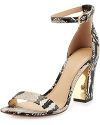 Tory Burch Shay Snake City Sandal  - Lyst