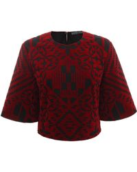 Alexander McQueen Patchwork Flocked Wide Sleeve Crop Top - Lyst