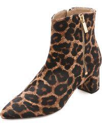 Diane von Furstenberg   Abbot Too Booties - Leopard   Lyst