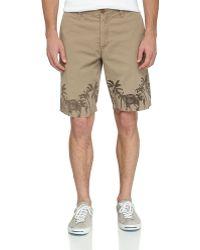 Tailor Vintage Elephantprint Novelty Shorts - Lyst