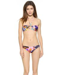 Milly Tropical Orchid Print Barbados Bikini Top - Multi - Lyst