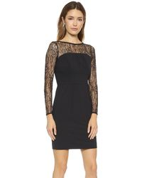 Shoshanna Lace Combo Natalia Dress  Black - Lyst