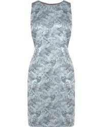 Coast Gabby Jacquard Dress - Lyst