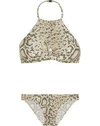 Zimmermann Essence Printed Halterneck Bikini - Lyst