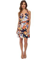Splendid Spring Blooms Dress - Lyst