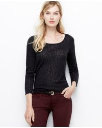 Ann Taylor Piped Burnout Tee - Lyst