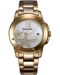 Tommy Bahama - Womens Swiss Goldtone Stainless Steel Bracelet Watch 40mm - Lyst