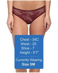 Stella McCartney Stella Lace Bikini Brief - Lyst