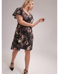 05123b503f8e Addition Elle Fit And Flare Flocked Dress - Michel Studio in Black ...