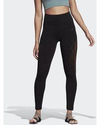 2ce40aa4056a2 adidas Warp Knit Tights in Black - Lyst
