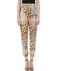 Kendall + Kylie - Jogger Leopard Pants - Lyst