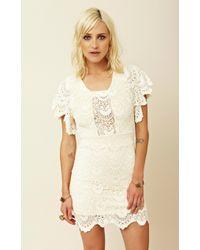 Nightcap Spanish Lace Flutter Dress - Lyst