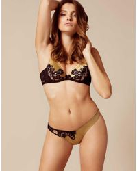 Agent Provocateur - Nayeli Thong Gold And Black - Lyst