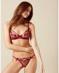 Agent Provocateur - Sparkle Brief Red - Lyst