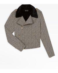 agnès b. Leopard Perfect Jacket