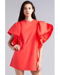 AKIRA - Always Better With A Ruffle Sleeve Shift Dress - Lyst