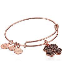 ALEX AND ANI - Four Leaf Clover Rose Gold Charm Bangle Bracelet, Expandable - Lyst