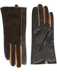 Calvin Klein - Leather/suede Gloves W/pop Color Fourchettes - Lyst