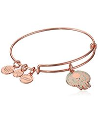 ALEX AND ANI - S Falcon Ewb Bangle Bracelet, Shiny Rose, Expandable - Lyst