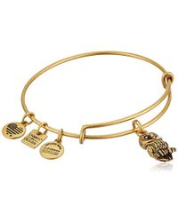 ALEX AND ANI - Charity By Design Ode To The Owl Bangle Bracelet - Lyst