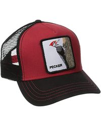 Animal Farm Trucker Hat
