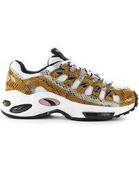 b4f7699e1b Shoes Cell Endura Animal Kingdom Trainer Fw 19-20