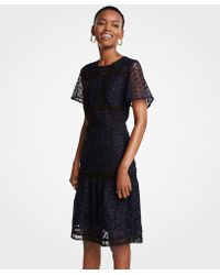 Ann Taylor - Tall Mixed Lace Flare Dress - Lyst