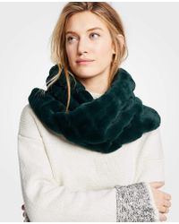 Ann Taylor - Ribbed Faux Fur Snood - Lyst