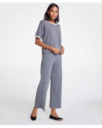 Ann Taylor - Petite Wool Knit Wide Leg Pants - Lyst