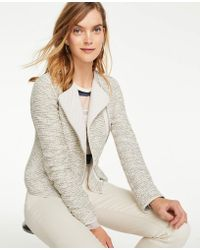 Ann Taylor - Quilted Tweed Moto Jacket - Lyst