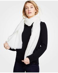 Ann Taylor - Shimmer Dot Scarf - Lyst
