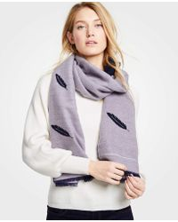 Ann Taylor - Reversible Feather Scarf - Lyst