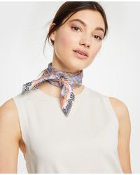 Ann Taylor - Mini Garden Silk Little Scarf - Lyst