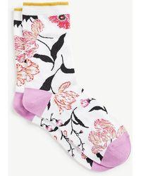 Ann Taylor   Botanical Trouser Socks   Lyst