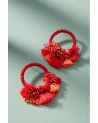 Mishky Luau Hooped Post Earrings uWsZ4AZ7