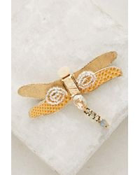 Anthropologie - Damselfly Pin - Lyst