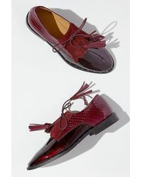 c04f1f4ca0 Anthropologie - Rogue Matilda Anissa Textured Patent-leather Brogues - Lyst