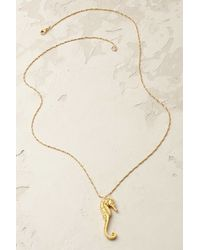 Catherine Weitzman - Gilded Seahorse Necklace - Lyst