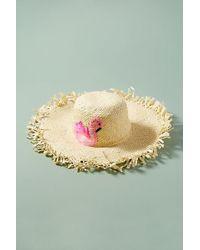 Anthropologie - Dorothea Flamingo Straw Hat - Lyst