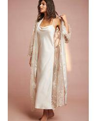 Rya Collection - Darling Dress - Lyst