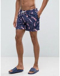 New Look - Swim Shorts In Seahorse Print - Lyst