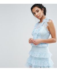 True Decadence - Floral And Dotty Mesh Ruffle Hem Dress - Lyst