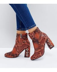 The March - Tan Snake Eyelet Detail Heeled Ankle Boots - Lyst