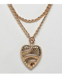 ASOS - Asos Design Curve Statement Multirow Necklace With Vintage Style Snake Locket In Gold - Lyst