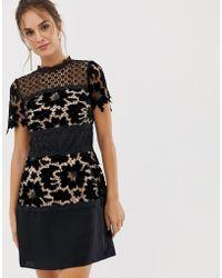 Coast - Coco Lace Dress - Lyst