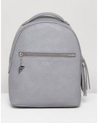 Fiorelli | Anouk Mini Backpack In Grey | Lyst