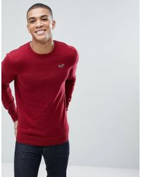 Hollister - Billy Crew Neck Knit Jumper Seagull Logo In Red - Lyst