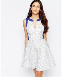 Hybrid - Eniko Lace Skater Dress With Contrast Trim - Lyst