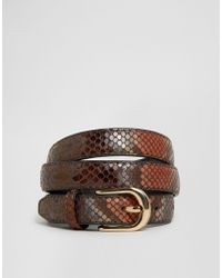 ASOS - High Shine Snake Skinny Waist And Hip Belt - Brown - Lyst