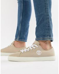 Timberland - Newport Trainers In Stone - Lyst